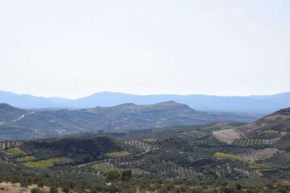 Traditional Cretan Villages: Archanes PDO wine region.